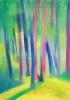 Nature - 29,7 x 42 cm